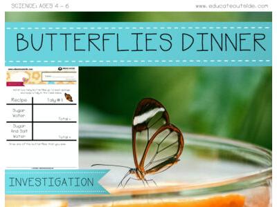 Butterflies Dinner Investigation