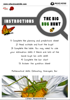 Math / Science Investigation: The Bug Hunt