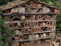 Bugs Hotel Research Project