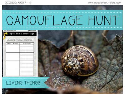 Camouflage Hunt
