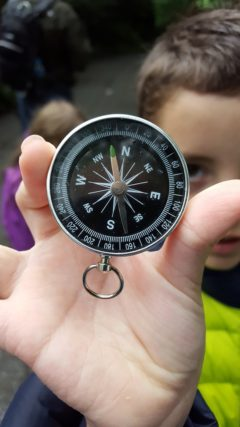 Compass Directions - Where Am I?
