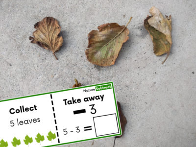 Nature Subtraction Task Cards