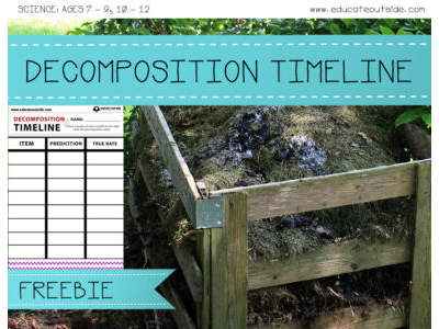 Decomposition Timeline