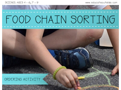 Food Chains Sorting Activity