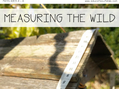 Measuring The Wild