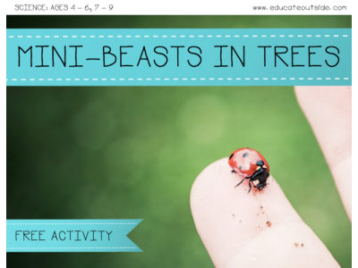 Mini-Beasts In Trees