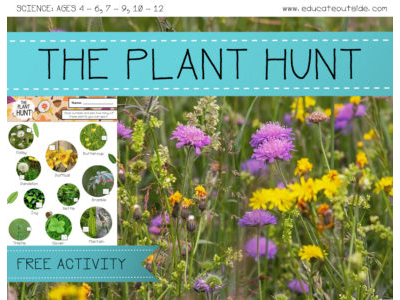 The Plant Hunt