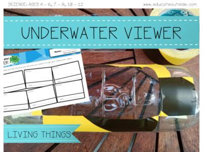 The Underwater Viewer